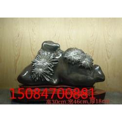 西藏菊花石摆件厂家_菊花石摆件厂家新资讯