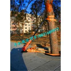 树木整正器 水泥杆扶正器 大树扶正器厂家