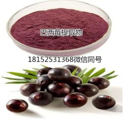 阿萨伊果粉 全水溶 天然果味 固体饮品原料 阿萨伊果浓缩粉