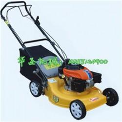草坪修剪机 自走式草坪机