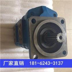 CBG2040-BFPL,秦皇岛齿轮泵