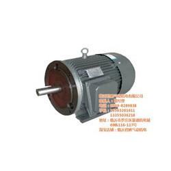 低速同步电动机_君鹏气动机电_同步电动机