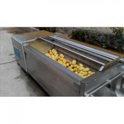 厂家直销 鑫正达果蔬气泡清洗机红薯清洗设