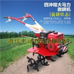 自走式旋耕机 7.5马力汽油微耕机 松土机图