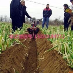 大功率田园管理机 圣鲁牌大葱地种植开沟机