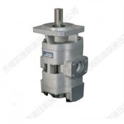 CBYZ-2063/2040-BFP,双联齿轮油泵