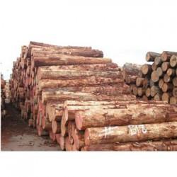 兴安收购松木企业一览表