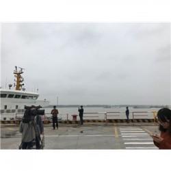 武汉阳逻港口冷冻鸡肉进口报关