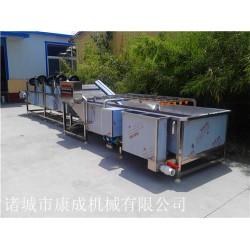 QX-5500黑木耳清洗机 芸豆清洗机 冷冻蔬菜清洗除杂设备