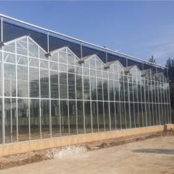 现代化智能温室建造、玻璃温室安装设计、温室大棚生产厂家