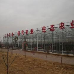 现代化智能温室建设、生态餐厅设计施工、山东温室大棚建造