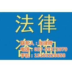 专项法律服务_新洲法律服务_羚圣伟杰