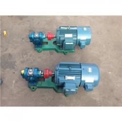 2CY齿轮泵 大流量高压耐磨泵 卫生食品泵 无